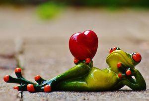 Partnervermittlungen ausland